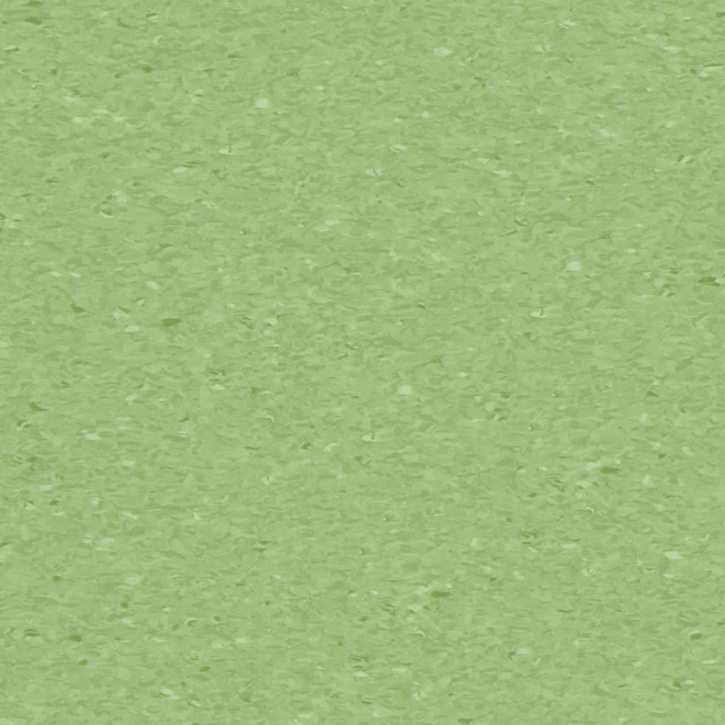 fresh grass 0406