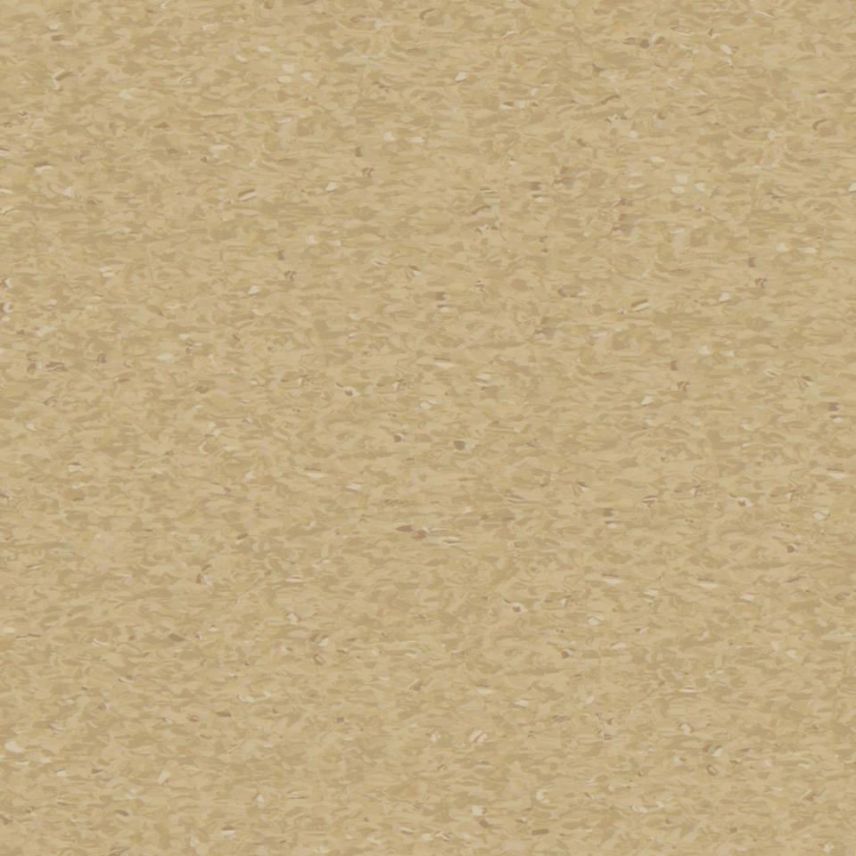 medium camel 0409