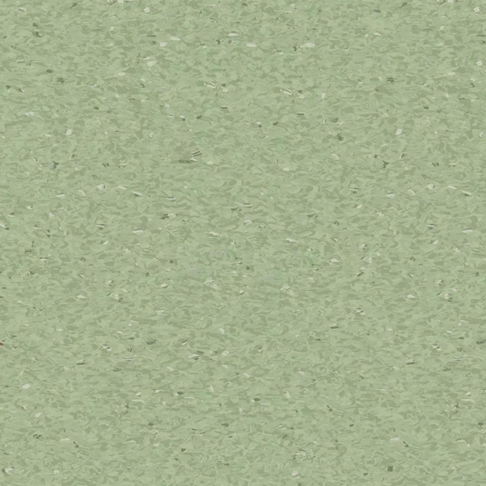 medium green 0426