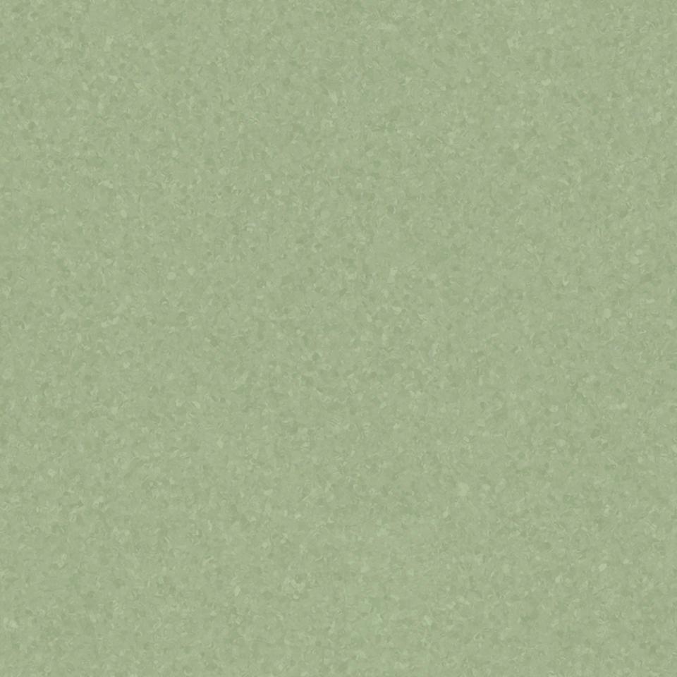 medium green 0976