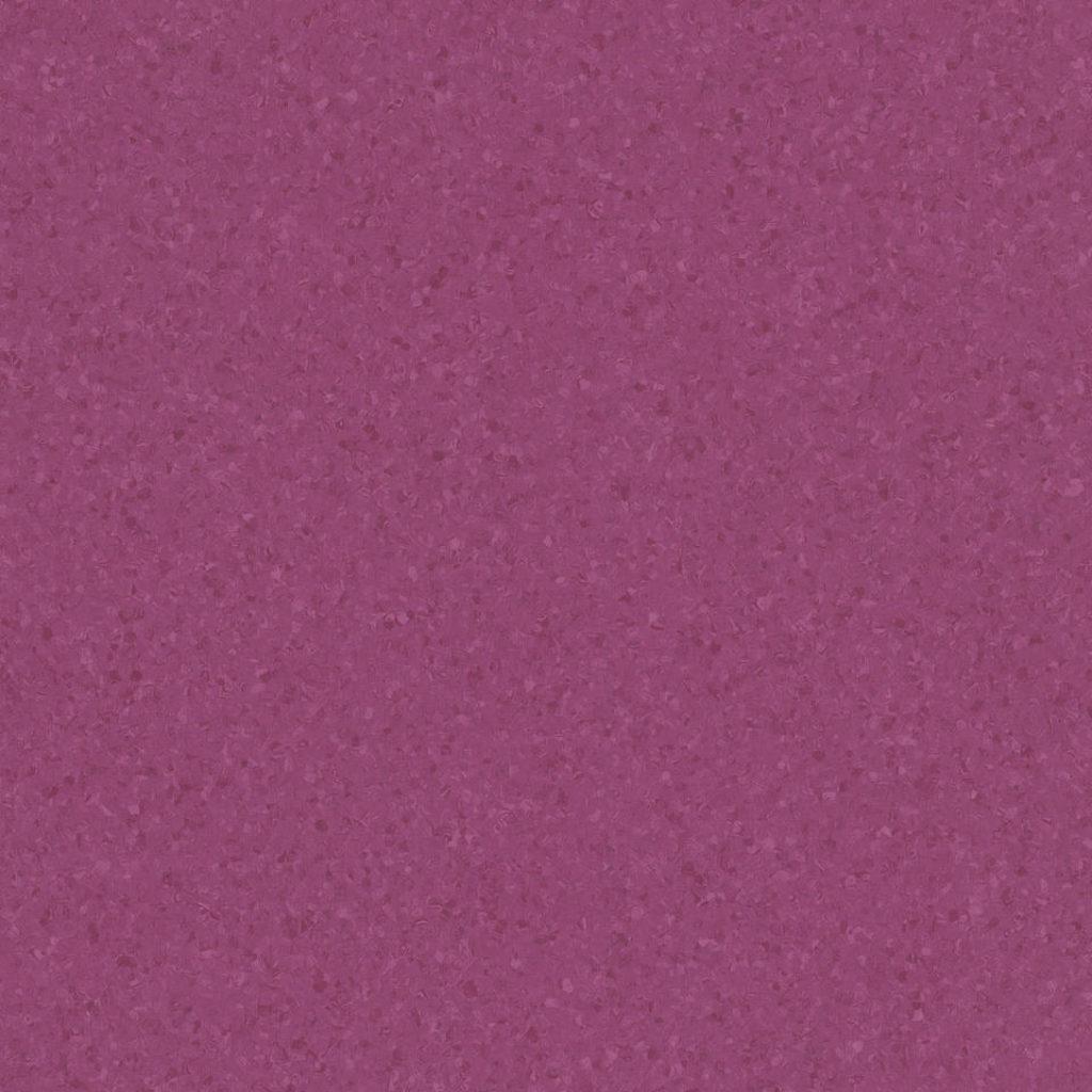 red purple 0776