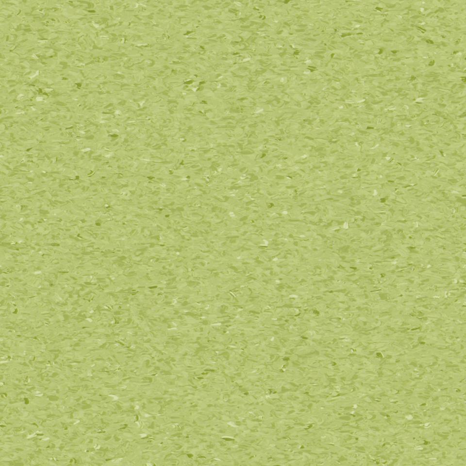 soft kivi 0750
