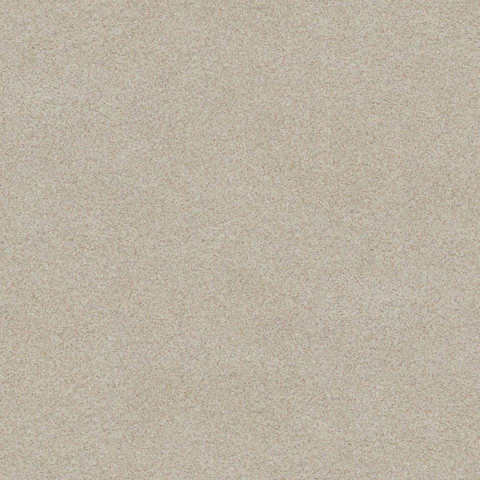 modern silver beige